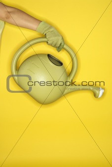 Caucasian woman arm holding watering can.