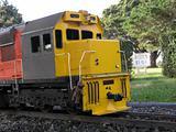 Miniature Diesel Train