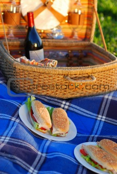 Picnic sandwiches 