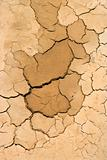 Close-up of dry, cracked dirt.