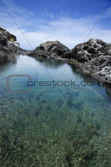 Tidal pool in Maui, Hawaii.
