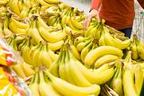 Bananas at a Market
