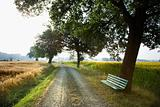 Bench and Gravel Road in the Country