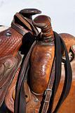 Detail of Horse Saddles
