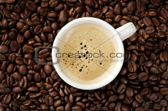 Cappucino on coffee beans