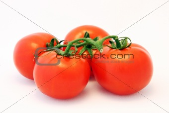 Four Organic Tomatoes on the Vine