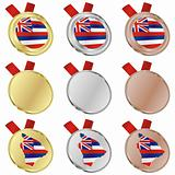 hawaii vector flag in medal shapes