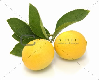 on white backTwo lemons