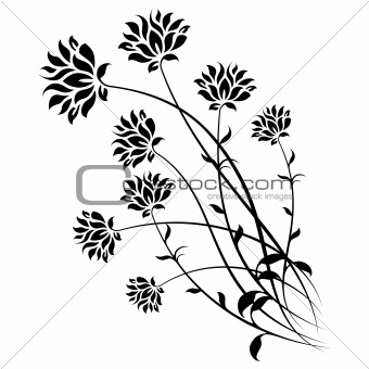 Abstract Isolated Flowers