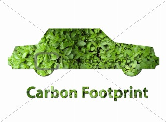 Car carbon footprint