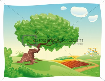 Countryside with tree.