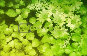 Grunge Floral Abstract Background