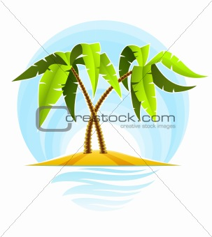 tropical palms on island in ocean