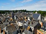 Amboise from the Castle