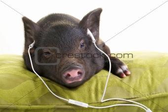 Eazy listening