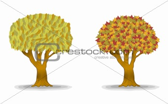 autumn trees with detail leaves illustration