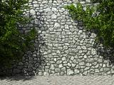 illuminated stone wall and ivy