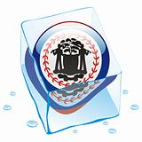 illustration of belize button flag frozen in ice cube