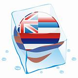 illustration of hawaii button flag frozen in ice cube
