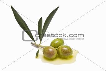 Olives to make olive oil.