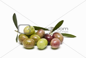 Olives to make olive oil.
