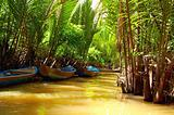 Mekong Delta - waterway through jungle and boats