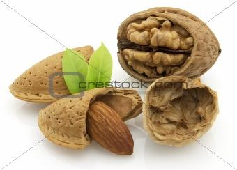Almonds with walnut