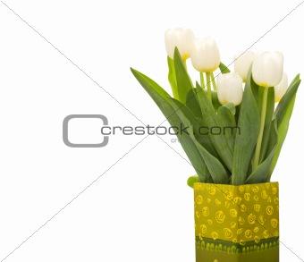 Beautiful fresh white tulips