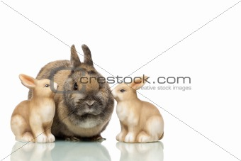 Group of three Easter bunnies are sitting together