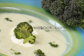 Broccoli crea soup