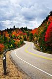 Fall highway