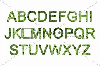 green eco font