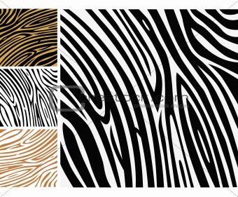 Animal background pattern - zebra skin print