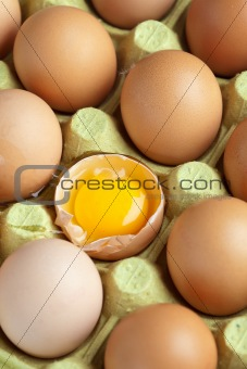 Box of eggs