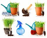 set of green grass in the pot with shovel tool and ground