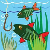 Beautiful Fish. Fishing. Aquarium fish