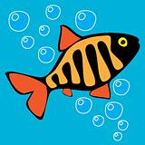 Beautiful Fish. Fishing. Aquarium fish