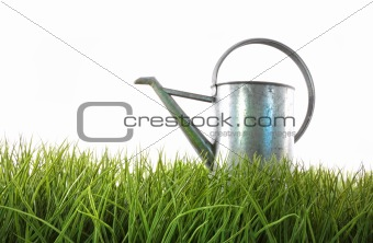 Old watering can in grass with white