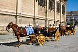 carriage in Seville