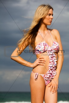 Attractive Young Woman Wearing a Bikini