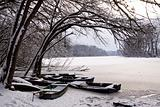 Winter lake landscape