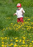 child on the green meadow