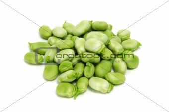 broad bean