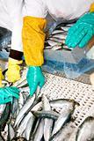 Fish sorting