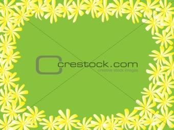 camomile card