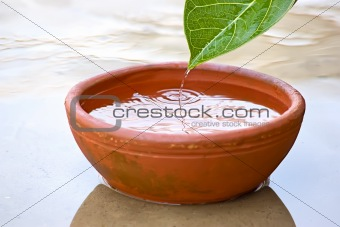 Dropping of Water drops from green leaf into red clay bowl