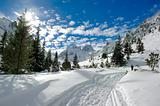 Sunny winter in mountain