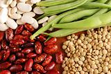 Various types of beans