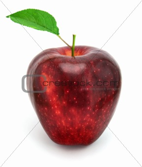 apple with leaf