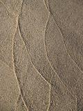 Sand Tracings on Seashore